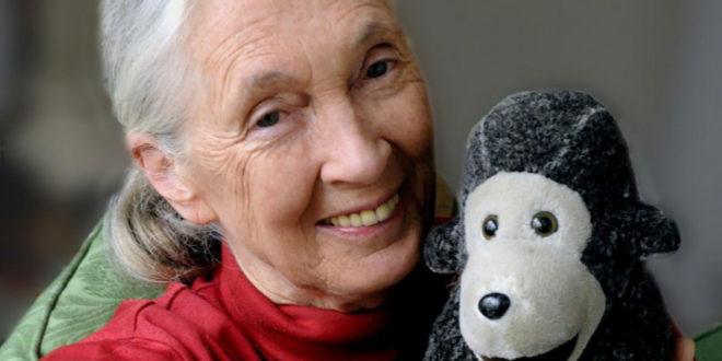 Les débats du Club – 18/01/18 – Rencontre exceptionnelle avec la scientifique et humaniste Jane Goodall