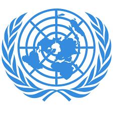 RSF appelle l'ONU à créer un représentant spécial sur la protection des journalistes